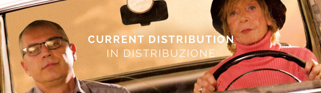 banner_distribution2